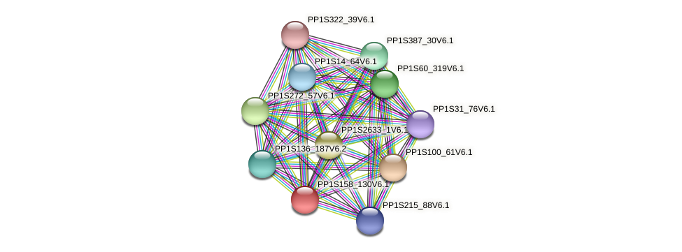 PP1S158_130V6.1 protein (Physcomitrella patens) - STRING interaction network