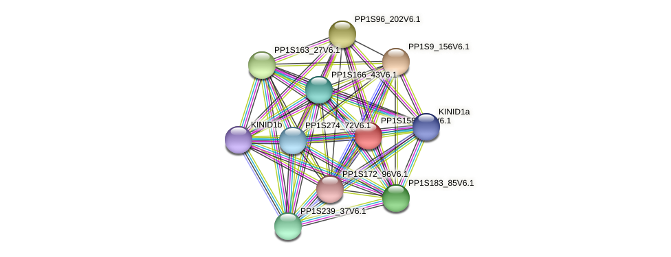 PP1S158_177V6.1 protein (Physcomitrella patens) - STRING interaction network