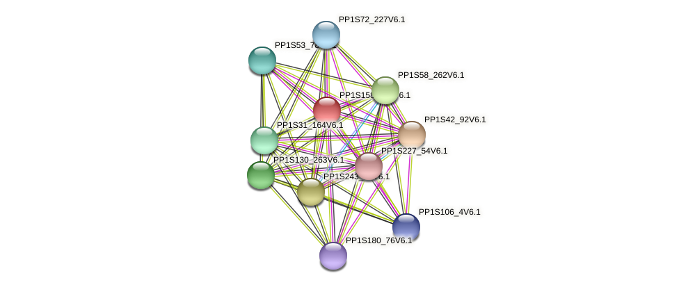 PP1S158_178V6.1 protein (Physcomitrella patens) - STRING interaction network