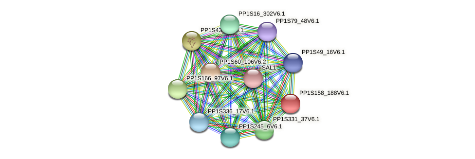PP1S158_188V6.1 protein (Physcomitrella patens) - STRING interaction network