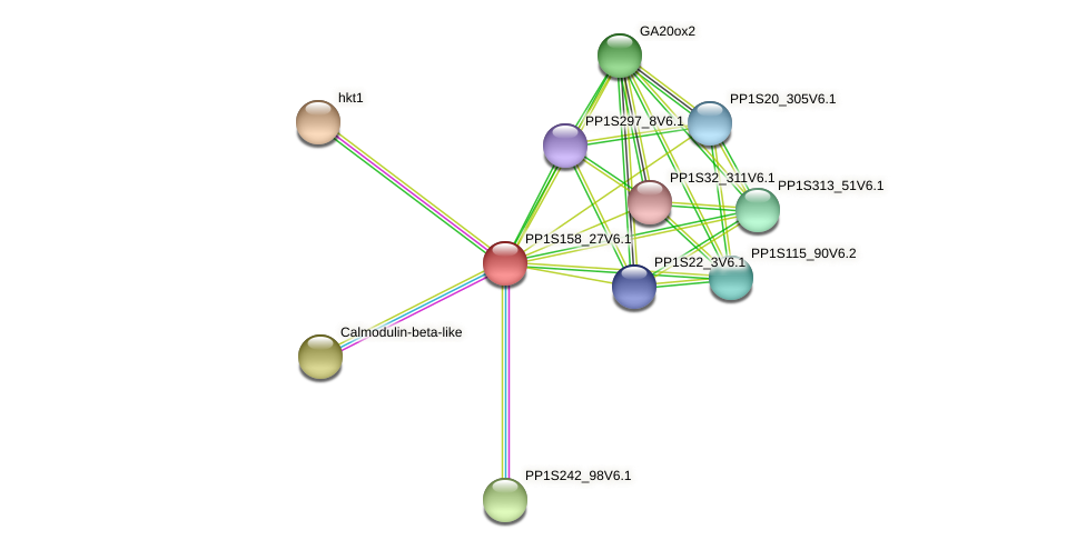 PP1S158_27V6.1 protein (Physcomitrella patens) - STRING interaction network