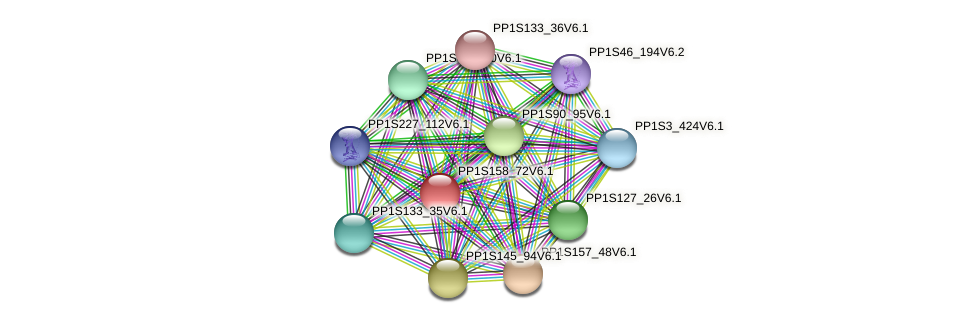 PP1S158_72V6.1 protein (Physcomitrella patens) - STRING interaction network