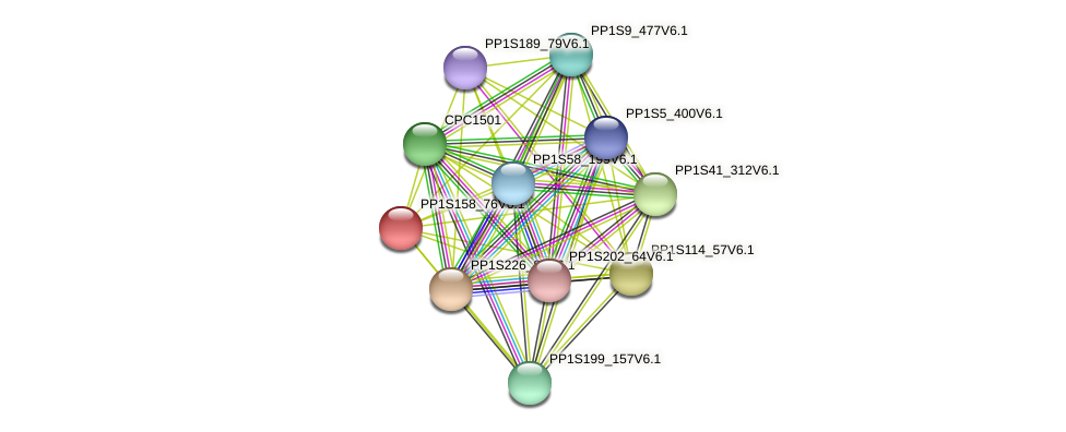 PP1S158_76V6.1 protein (Physcomitrella patens) - STRING interaction network