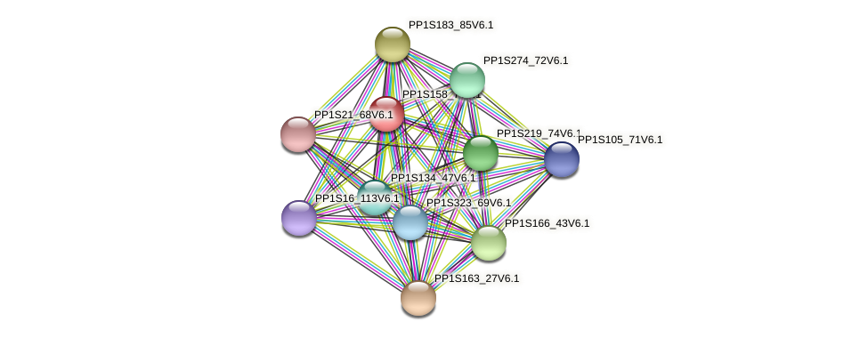 PP1S158_7V6.1 protein (Physcomitrella patens) - STRING interaction network