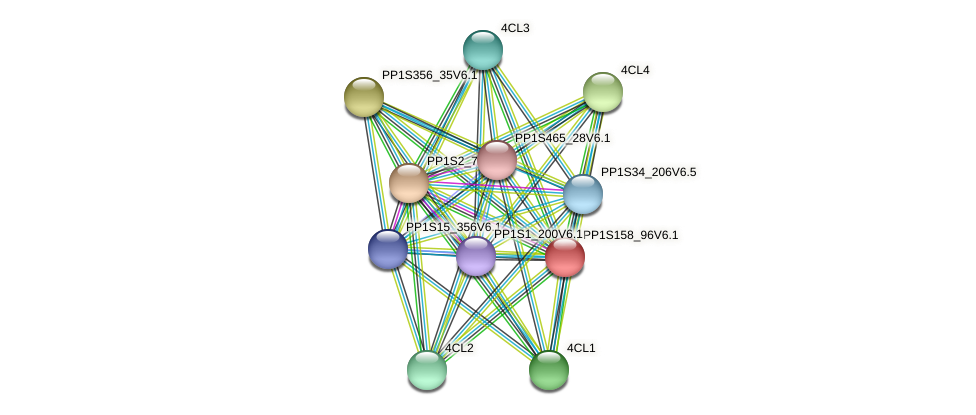 PP1S158_96V6.1 protein (Physcomitrella patens) - STRING interaction network