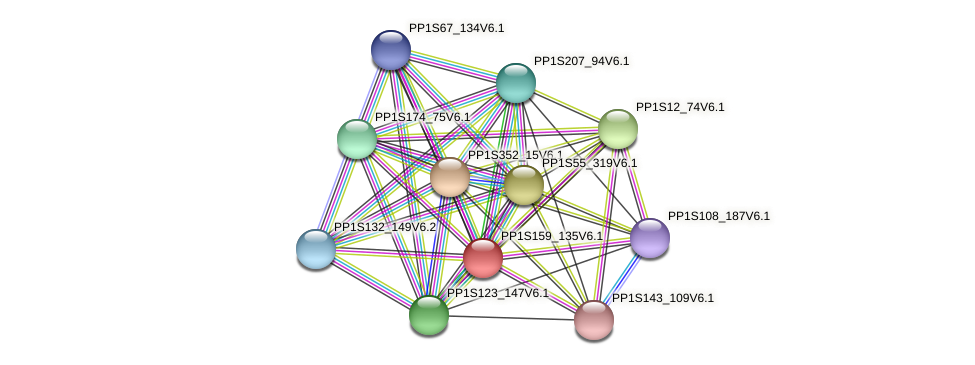 PP1S159_135V6.1 protein (Physcomitrella patens) - STRING interaction network