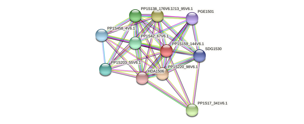 PP1S159_144V6.1 protein (Physcomitrella patens) - STRING interaction network