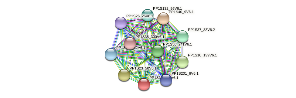 PP1S159_52V6.1 protein (Physcomitrella patens) - STRING interaction network