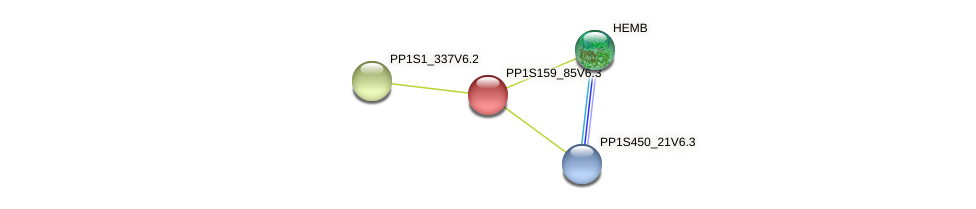 PP1S159_85V6.2 protein (Physcomitrella patens) - STRING interaction network