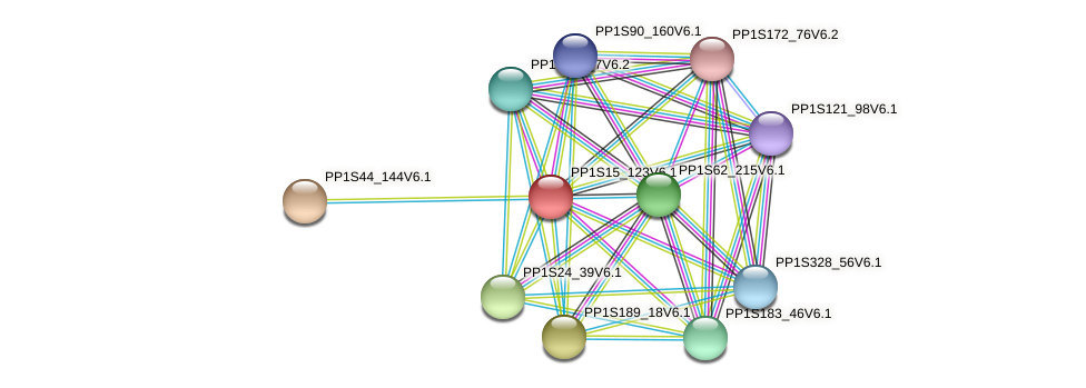 PP1S15_123V6.1 protein (Physcomitrella patens) - STRING interaction network
