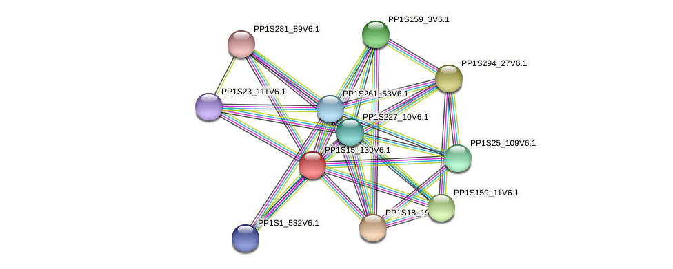 PP1S15_130V6.1 protein (Physcomitrella patens) - STRING interaction network