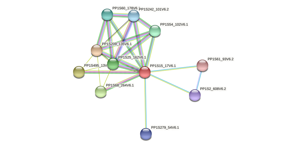 PP1S15_17V6.1 protein (Physcomitrella patens) - STRING interaction network
