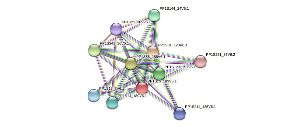 PP1S15_183V6.1 protein (Physcomitrella patens) - STRING interaction network