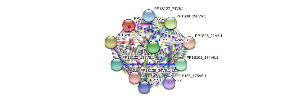 PP1S15_197V6.1 protein (Physcomitrella patens) - STRING interaction network