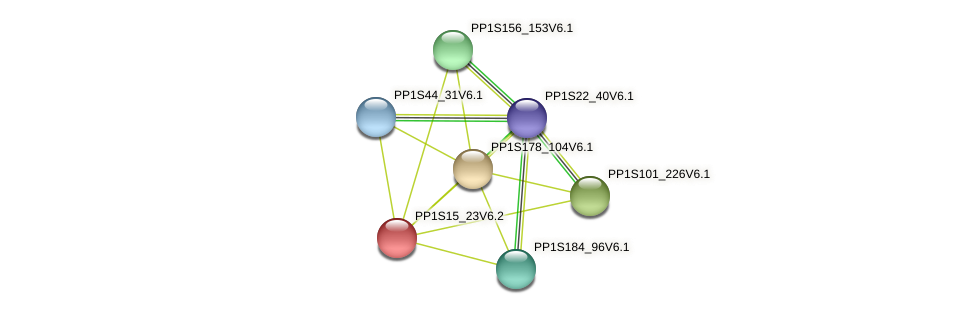 PP1S15_23V6.2 protein (Physcomitrella patens) - STRING interaction network