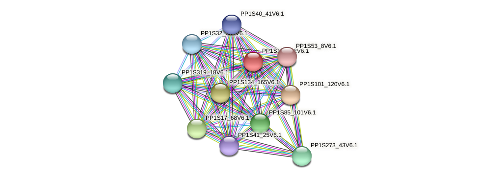 PP1S15_262V6.1 protein (Physcomitrella patens) - STRING interaction network