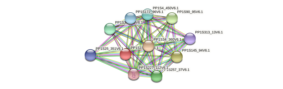 PP1S15_274V6.1 protein (Physcomitrella patens) - STRING interaction network