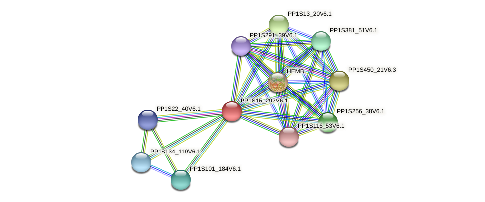 PP1S15_292V6.1 protein (Physcomitrella patens) - STRING interaction network