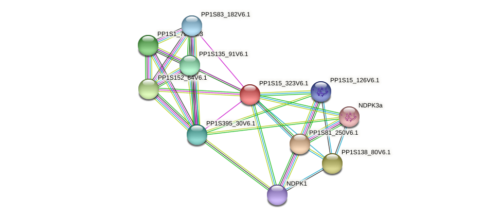 PP1S15_323V6.1 protein (Physcomitrella patens) - STRING interaction network