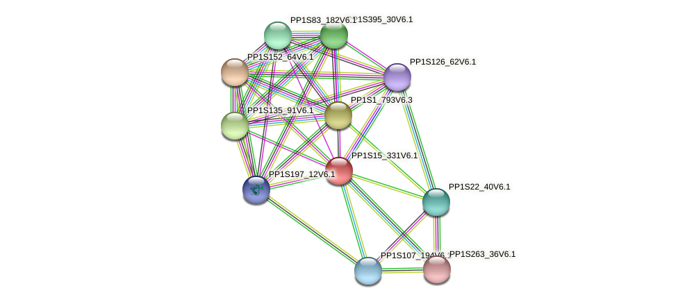 PP1S15_331V6.1 protein (Physcomitrella patens) - STRING interaction network