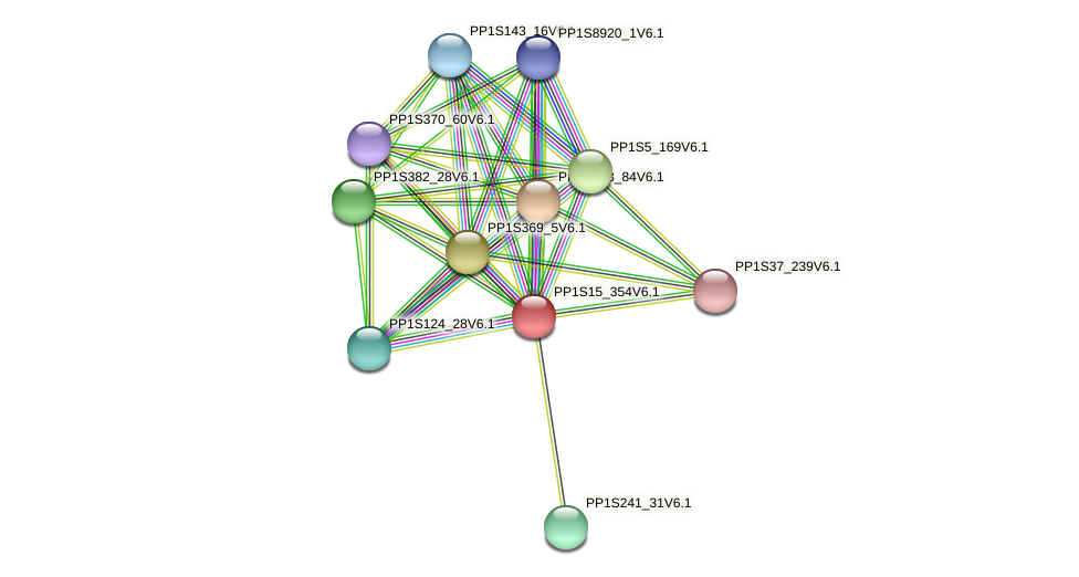 PP1S15_354V6.1 protein (Physcomitrella patens) - STRING interaction network