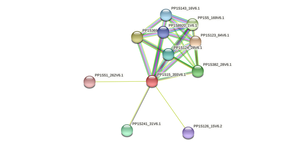 PP1S15_355V6.1 protein (Physcomitrella patens) - STRING interaction network