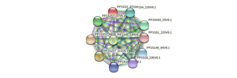PP1S15_370V6.1 protein (Physcomitrella patens) - STRING interaction network