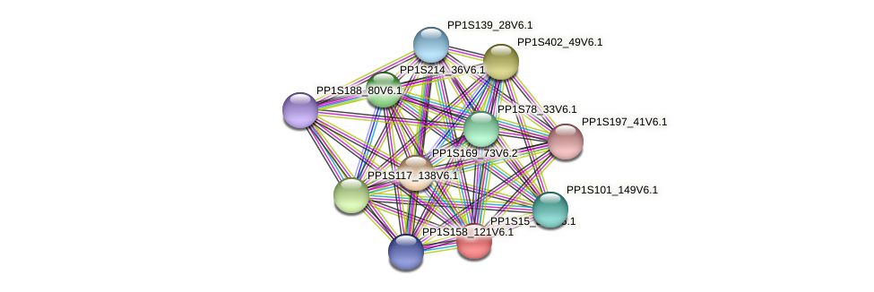 PP1S15_383V6.1 protein (Physcomitrella patens) - STRING interaction network