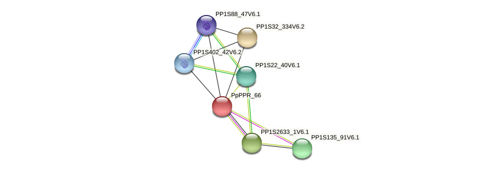 PP1S15_385V6.1 protein (Physcomitrella patens) - STRING interaction network