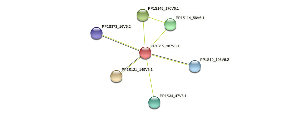 PP1S15_387V6.1 protein (Physcomitrella patens) - STRING interaction network