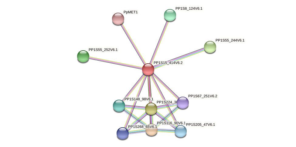 PP1S15_414V6.2 protein (Physcomitrella patens) - STRING interaction network