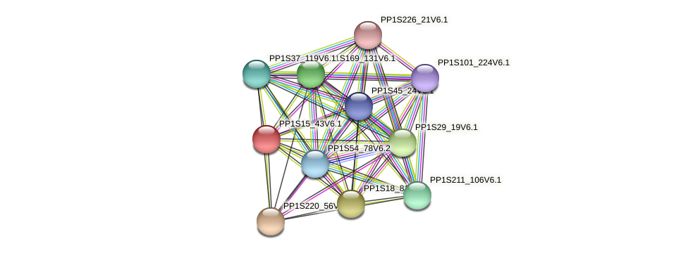 PP1S15_43V6.1 protein (Physcomitrella patens) - STRING interaction network