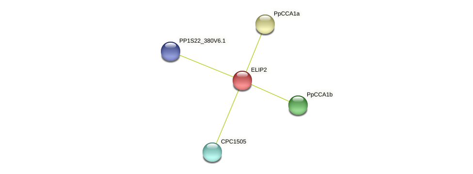 PP1S15_459V6.1 protein (Physcomitrella patens) - STRING interaction network