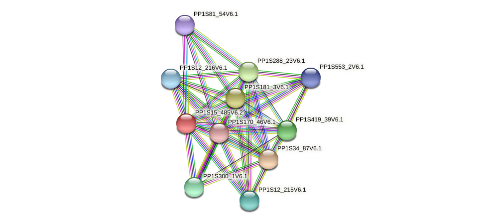PP1S15_485V6.1 protein (Physcomitrella patens) - STRING interaction network