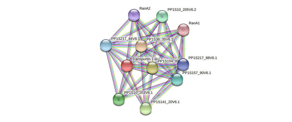 PP1S15_486V6.1 protein (Physcomitrella patens) - STRING interaction network