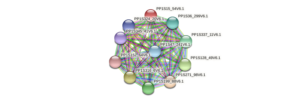 PP1S15_54V6.1 protein (Physcomitrella patens) - STRING interaction network