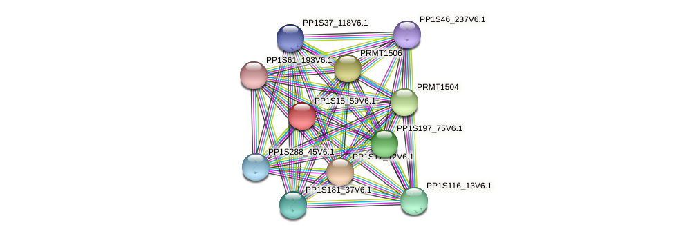 PP1S15_59V6.1 protein (Physcomitrella patens) - STRING interaction network