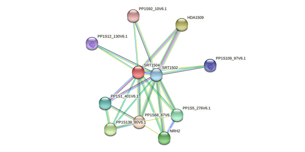 SRT1504 protein (Physcomitrella patens) - STRING interaction network