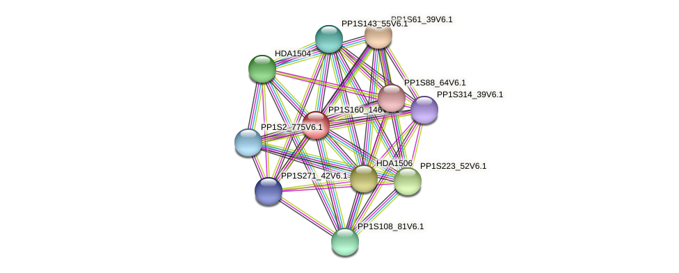PP1S160_146V6.1 protein (Physcomitrella patens) - STRING interaction network