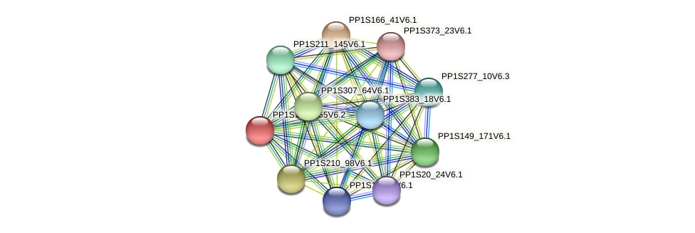PP1S160_155V6.1 protein (Physcomitrella patens) - STRING interaction network