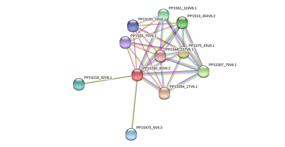 PP1S160_80V6.2 protein (Physcomitrella patens) - STRING interaction network