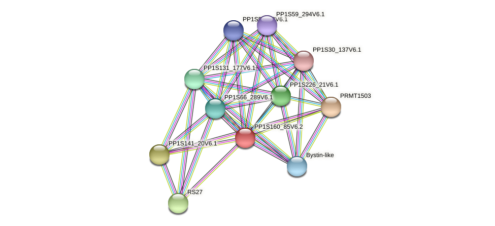 PP1S160_85V6.2 protein (Physcomitrella patens) - STRING interaction network