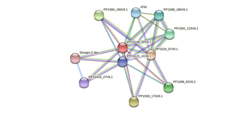 PP1S160_92V6.1 protein (Physcomitrella patens) - STRING interaction network