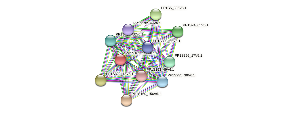 PP1S161_122V6.1 protein (Physcomitrella patens) - STRING interaction network