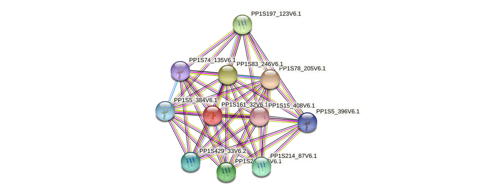PP1S161_32V6.1 protein (Physcomitrella patens) - STRING interaction network