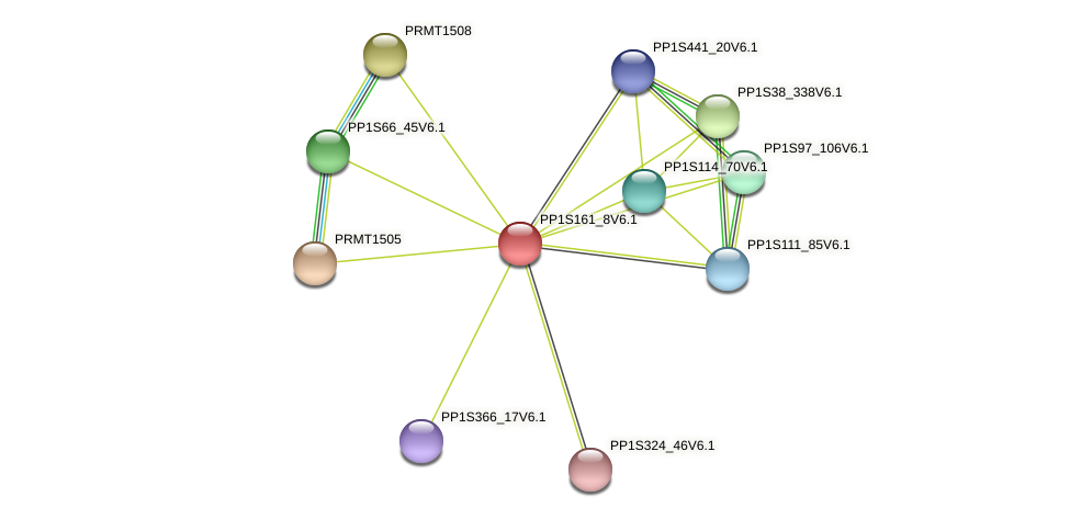 PP1S161_8V6.1 protein (Physcomitrella patens) - STRING interaction network