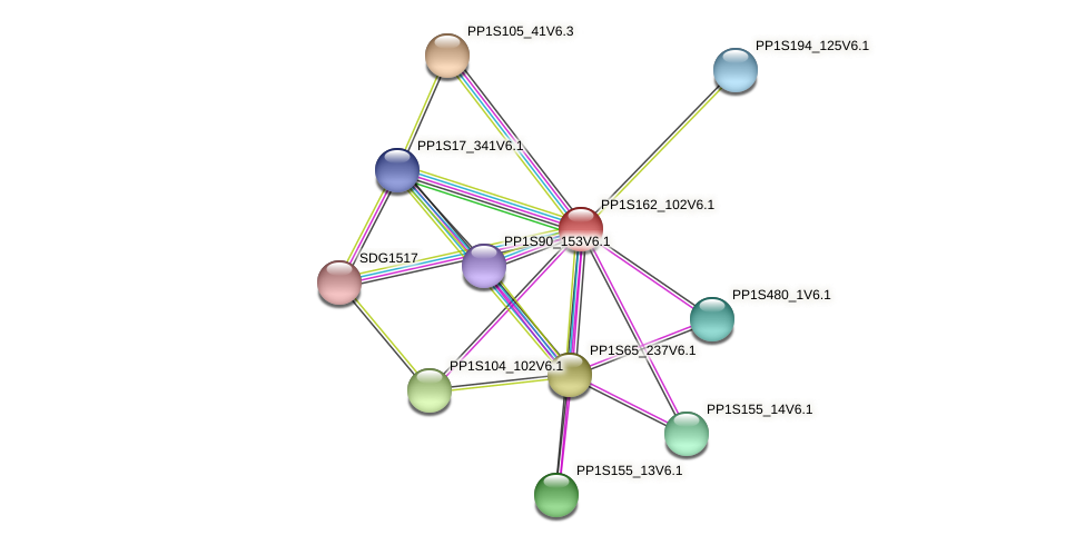 PP1S162_102V6.1 protein (Physcomitrella patens) - STRING interaction network