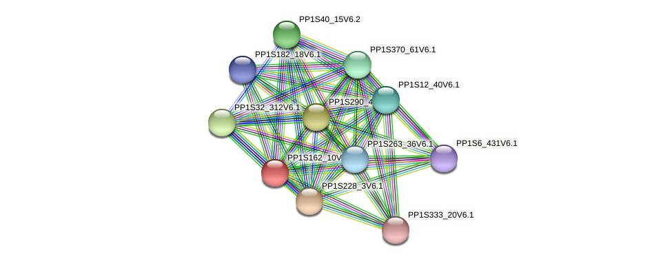 PP1S162_10V6.1 protein (Physcomitrella patens) - STRING interaction network
