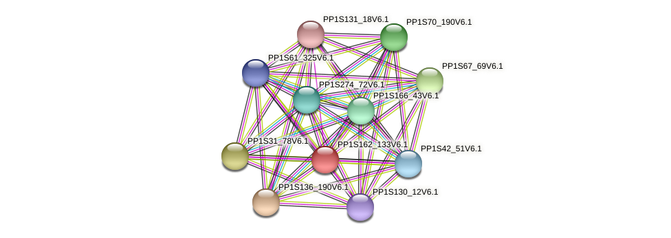 PP1S162_133V6.1 protein (Physcomitrella patens) - STRING interaction network