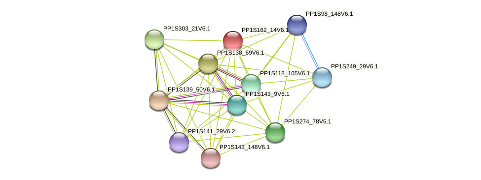 PP1S162_14V6.1 protein (Physcomitrella patens) - STRING interaction network